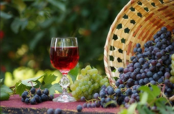 Как из винограда сделать настойку из 746