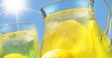 Как устроить своим кишкам праздник: рецепт лимонада со свойствами пробиотикадля очищения от токсинов и шлаков