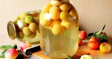 kompot-iz-yablok-s-limonom