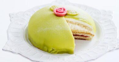 shvedskij-tort-princessa