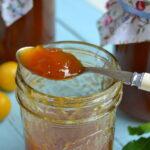 dzhem-iz-alychi-s-apelsinami