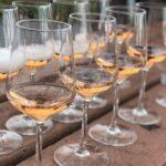 shampanskoe-s-shokoladom