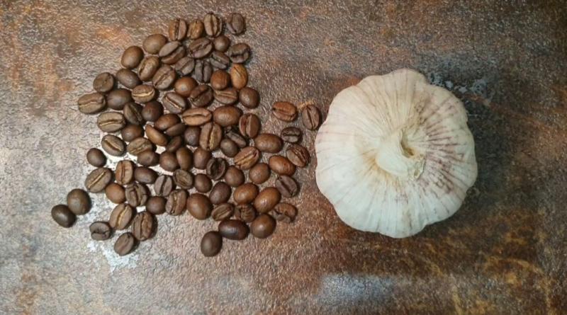 Кофе с чесноком по рецепту из Штирлица: мы не верили, но это оказалось вкусно