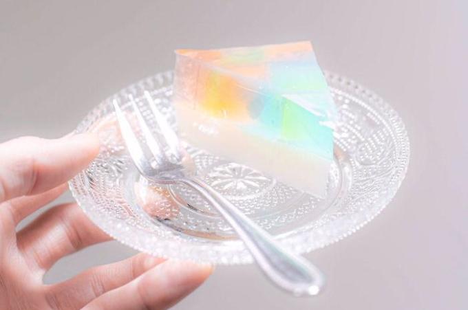 raznocvetnyj-yaponskij-tort