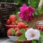 varenye-iz-klubniki-s-lepestkami-roz
