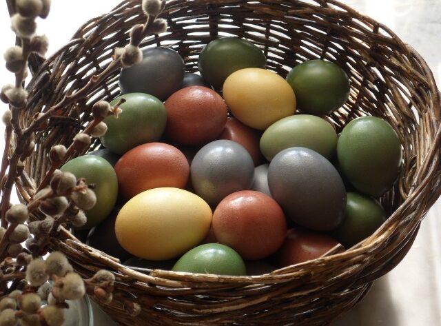 """Таблица натуральных красителей для окраски Пасхальных яиц (в скорлупе) (проверено авторами поста). Apr. 7th, 2012 at 1:47 PM Кроме"""" таблицы"""" красителей под катом приведены значение цветов в иконописи которое можно учитывать при окраске Пасхальных яиц, к тому же это не безынтересно и может быть кому нибудь пригодится). Все яйца на фото окрашены авторами с помощью натуральных красителей . Смотреть и читать под катом... Все яйца на фотографиях окрашены с помощью черники , куркумы и вишневых веток. Но описанные ниже в «таблице» способы окраски другими натуральными красителями, так же проверены авторами) . КРАСНЫЙ (розовый) ЦВЕТ – отвар КОРЫ ВИШНИ или ВЕТОК ВИШНИ. Отварить кору или веточки вишни , дать настояться несколько часов ( лучше проварить и оставить на ночь) , обязательно процедить, варить в этом настое яйца. Если отвар коры вишни сделать слабым, соответственно яйца окрасятся в РОЗОВЫЙ. СИНИЙ (голубой) ЦВЕТ – отвар ягод ЧЕРНИКИ ( замороженые ягоды черники отварить недолго и процедить. Остудить . Положить вымытые в теплой воде яйца и сварить. Интенсивность цвета зависит от концентрации – количества ягод на объем воды. Что бы получить ГОЛУБОЙ цвет, черники требуется небольшое количество – около 2-х столовых ложек на 250 мл воды . Что бы получить ФИОЛЕТОВЫЙ цвет – черники нужно взять как для синего или чуть больше , но дать настояться несколько часов, лучше оставить отвар на ночь) прежде чем варить в этом отваре яйца. ЖЕЛТЫЙ ЦВЕТ – раствор КУРКУМЫ развести в воде ( сперва в небольшом количестве воды растереть порошок куркумы и только после этого добавиить его в емкость в которой будут окрашиваться яйца) и отварить яйца. РОМАШКА – дает нежный желтый цвет, ромашку можно отварить и процедить или варить яйца вместе с пакетиками ромашки аптечной. КОЖУРА ГРАНАТА дает желтый цвет – варить яйца прямо с кожурой граната или отварить кожуру и процедить, остудить и потом варить яйца. Авторов этого поста цвет полученный при окраске кожурой граната не впечатлил. КОРИЧНЕВЫЙ ЦВЕТ –"""