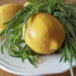 Домашний лимонад – 2 литра из 1 лимона. Простой рецепт.